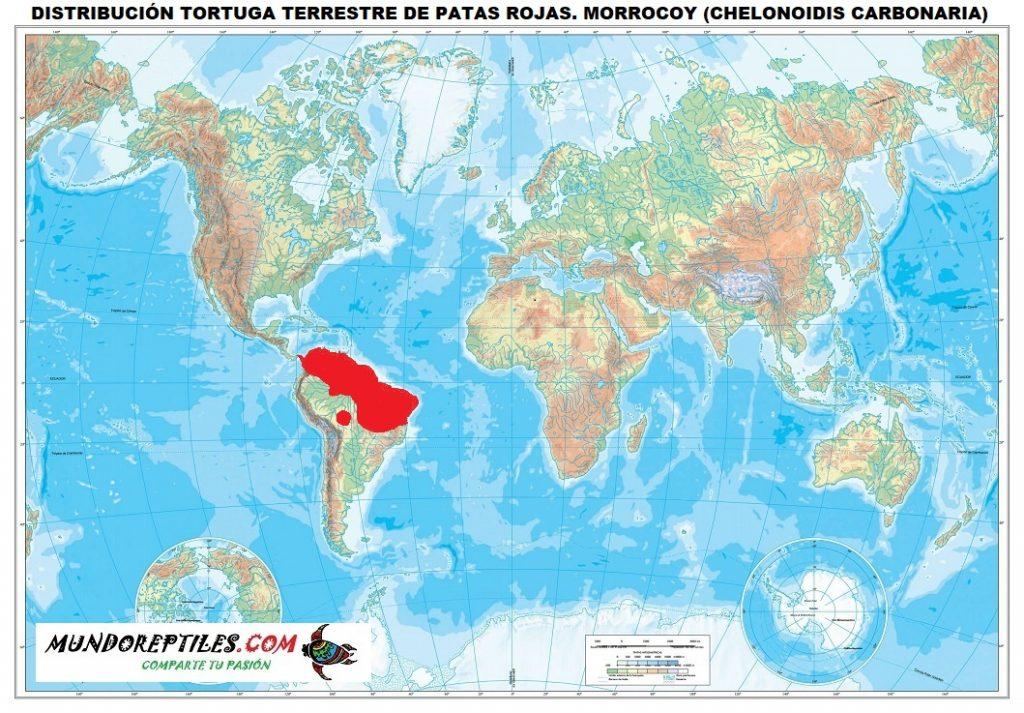 distribución tortuga patas rojas morrocoy Chelonoidis carbonaria