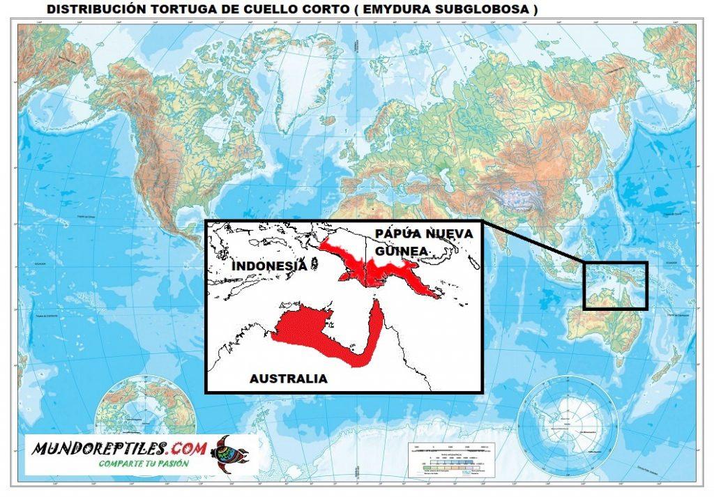 distribución tortuga de cuello corto emydura subglobosa