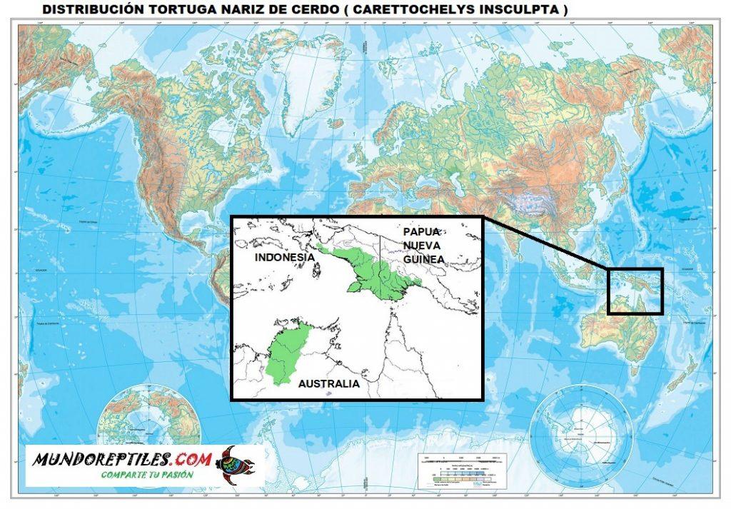 distribución y habitat tortuga nariz de cerdo carettochelys insculpta