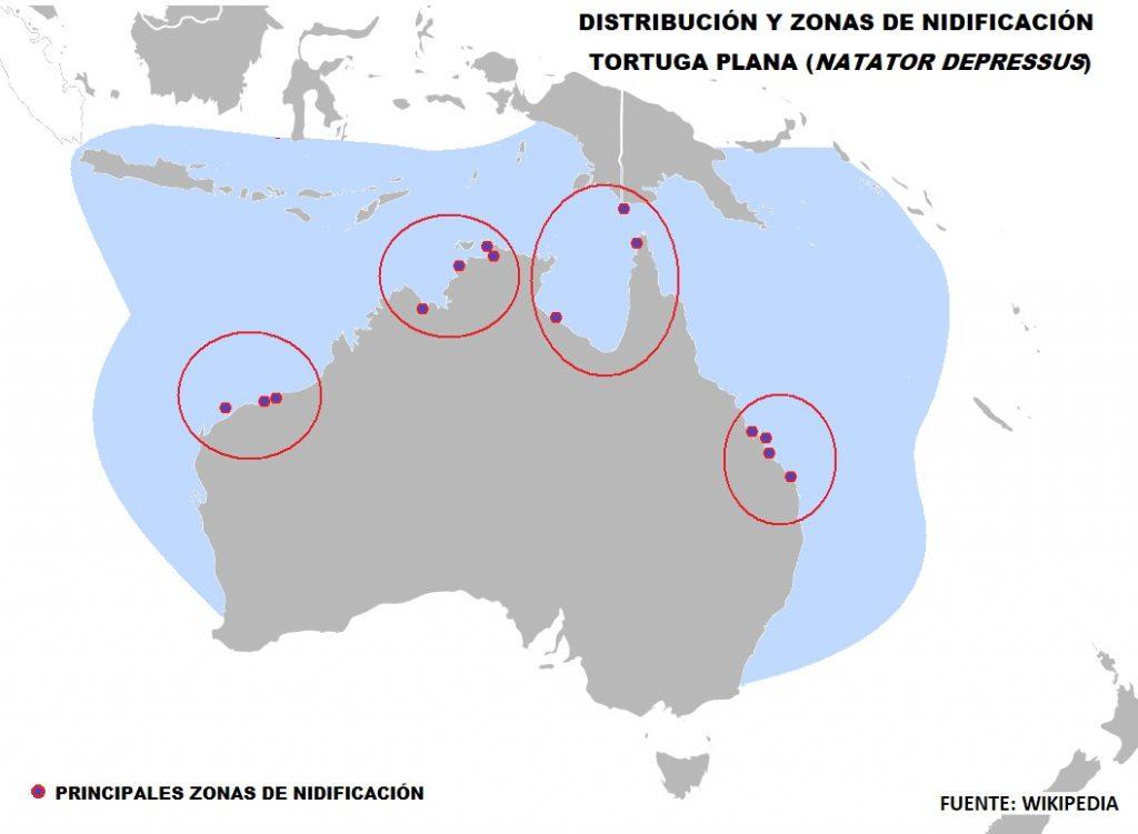 mapa de distribucion y nidificacion de la tortuga plana